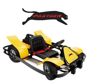 Panther Kart
